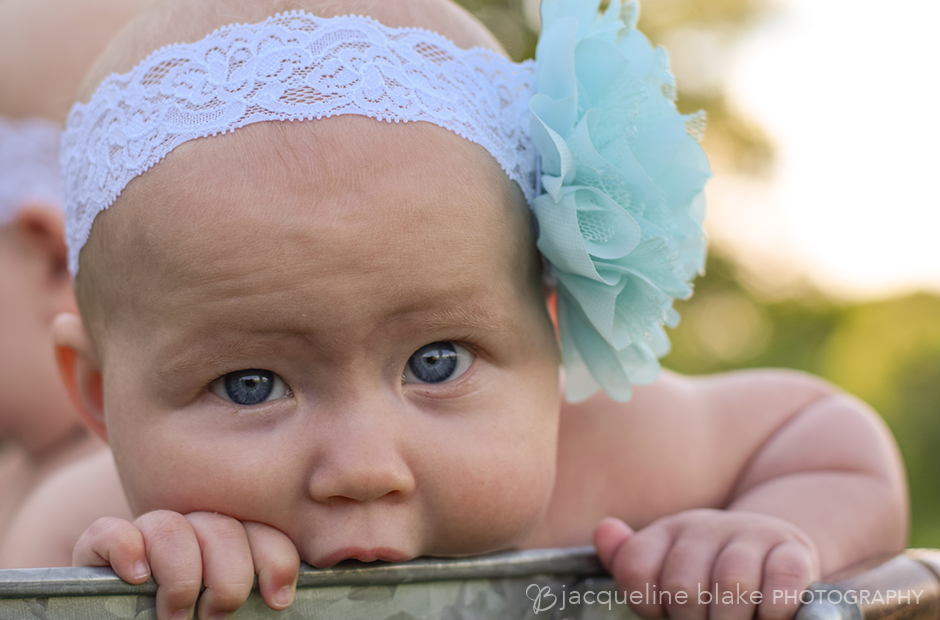 Twin Baby Photography - Jacqueline Blake Photograpy