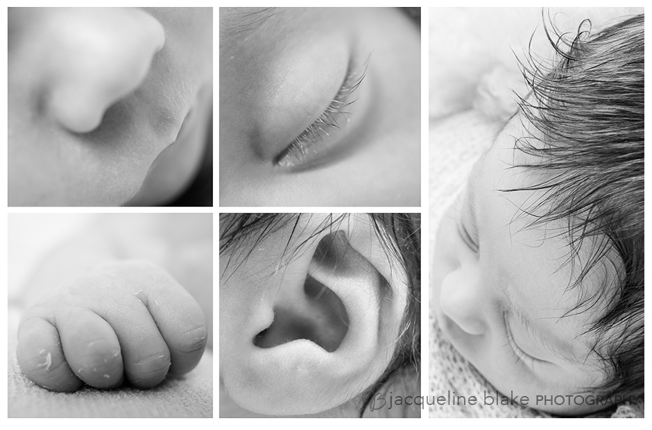 Professional Newborn Photography in Ham Lake
